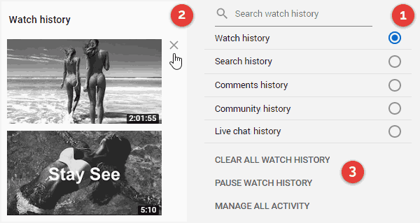 Delete Your History on YouTube